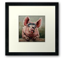 Friendly Pig Framed Print