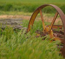 wheel by Joshua Westendorf