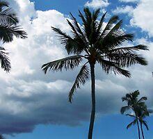 "Maui in May by Lenora ""Slinky"" Regan"