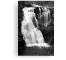 Bald River Falls III Canvas Print