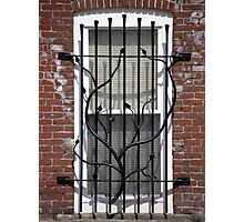Great Grate! Photographic Print