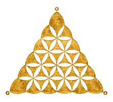 Flower Of Life, Sacred Geometry, Crop Circle, Triangle Photographic Print