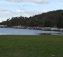 Cornelian Bay Shacks On Green by Leoni Williams