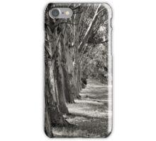 Sunday Drive iPhone Case/Skin