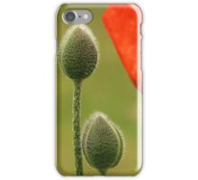 Poppy flower and buds iPhone Case/Skin