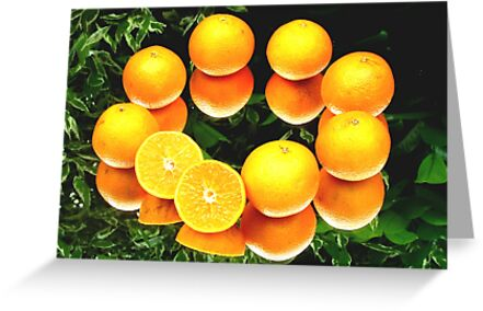 O is for Orange by Colin J Williams Photography