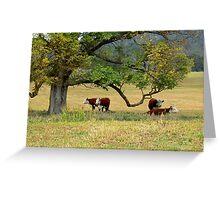 Delegate River Farm Greeting Card