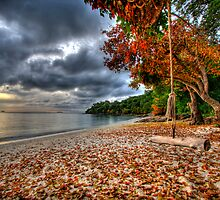 The Swing On The Beach by Bobby McLeod