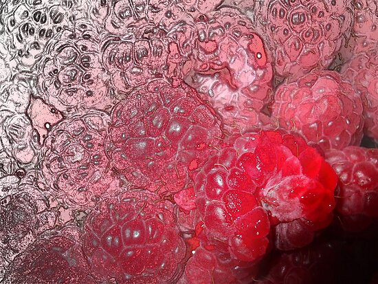 Raspberries: Line Drawing to Photo by incurablehippie