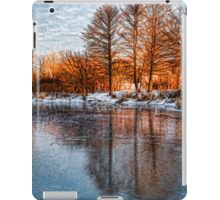 Cold Ice Trio - Lake Ontario Impressions iPad Case/Skin