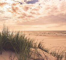 Romantic and calm seaside in summer by mlodzikova