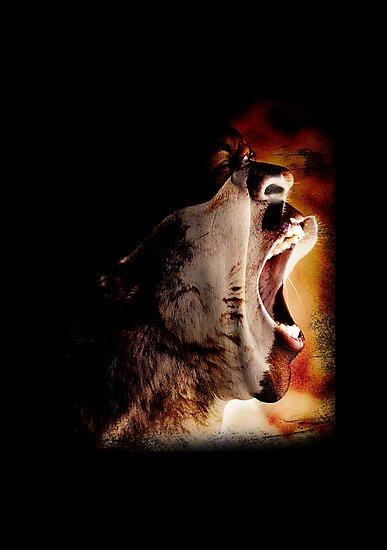 Roar by DesignBliss