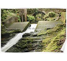Bridge above Torc waterfall Poster