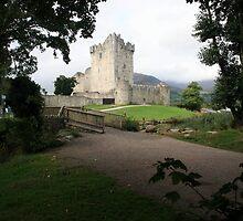 Ross castle morning view  by John Quinn