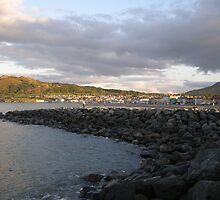 Bray shoreline by Aoife McNulty
