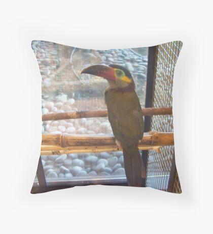 Toucan Sam Throw Pillow