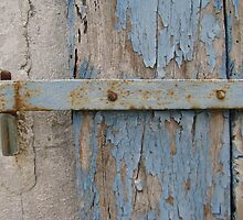 Blue-tinged hinge  by kate18a