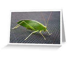 Green visitor Greeting Card