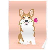 Valentines - Corgi with Rose - Love, Cute Corgi for Corgi Owners, Trendy Girls Love, Valentines Day Poster