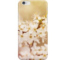 cherry tree young blossoms iPhone Case/Skin