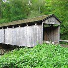 Teegarden-Centennial Covered Bridge by Monnie Ryan