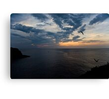 Wings of Nyx Canvas Print