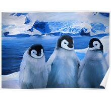 Trio of Penguins Poster