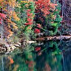 Fall on Lake Hartwell by DeeZ (D L Honeycutt)