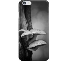 permanence iPhone Case/Skin