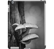 permanence iPad Case/Skin