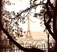 Paris Skyline from Sacre Coeur by Beth A