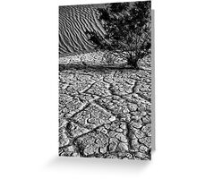 Life in  Death Valley Greeting Card