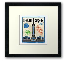 Lumiose City Framed Print