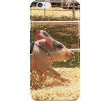 Pig Races iPhone Case/Skin
