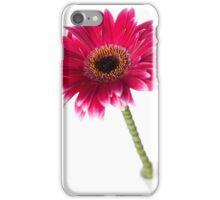 Gerbera14 iPhone Case/Skin