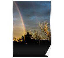 Winter Rainbows #1 Poster