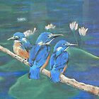 Kingfishers by louisegreen