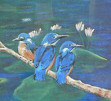 Kingfishers by louisegreen