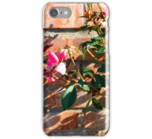 Roses Past Beauty iPhone Case/Skin