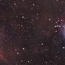 Orion Mosaic by astrochuck
