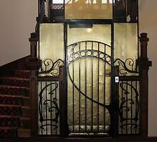 Art Nouveau lift door in Orleans, France by Denise Martin