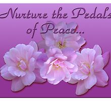 Nurture the Pedals of Peace by Diana Rogers