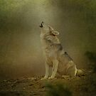 Wolf Howling by Sandy Keeton