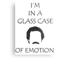Glass Case of Emotion Metal Print