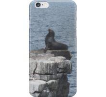 Sea Lion Galapagos islands iPhone Case/Skin