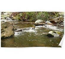 Cumberland river scene Poster