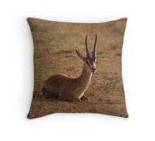 Grant's Gazelle Throw Pillow