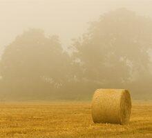 Morning Mist by George Swann
