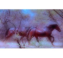 """A """"FANTASY"""" FOR DAWN Photographic Print"""