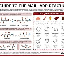The Maillard Reaction by Compound Interest